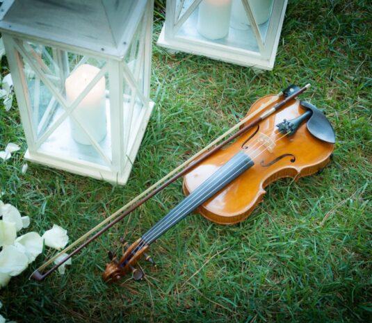 Magici Violini (4)